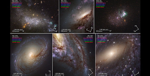 Compass Image for LEGUS Galaxies. Credit: NASA, ESA, and the LEGUS team