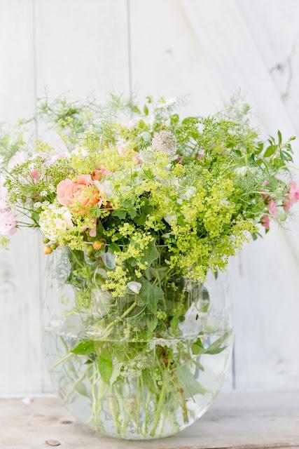 Sterndolden und Jungfern im Grünen,Weekendflowers, Pomponetti, Jungfern im Grünen, Sterndolden