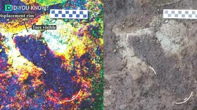 Tìm thấy dấu chân của con người 13 nghìn năm tuổi
