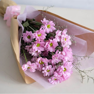 bunga-aster-gresik2