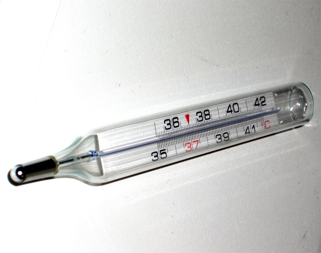El Termometro Concepto Y Utilidad Termometro digital infrarrojo de frente sin contacto kodyee. el termometro blogger