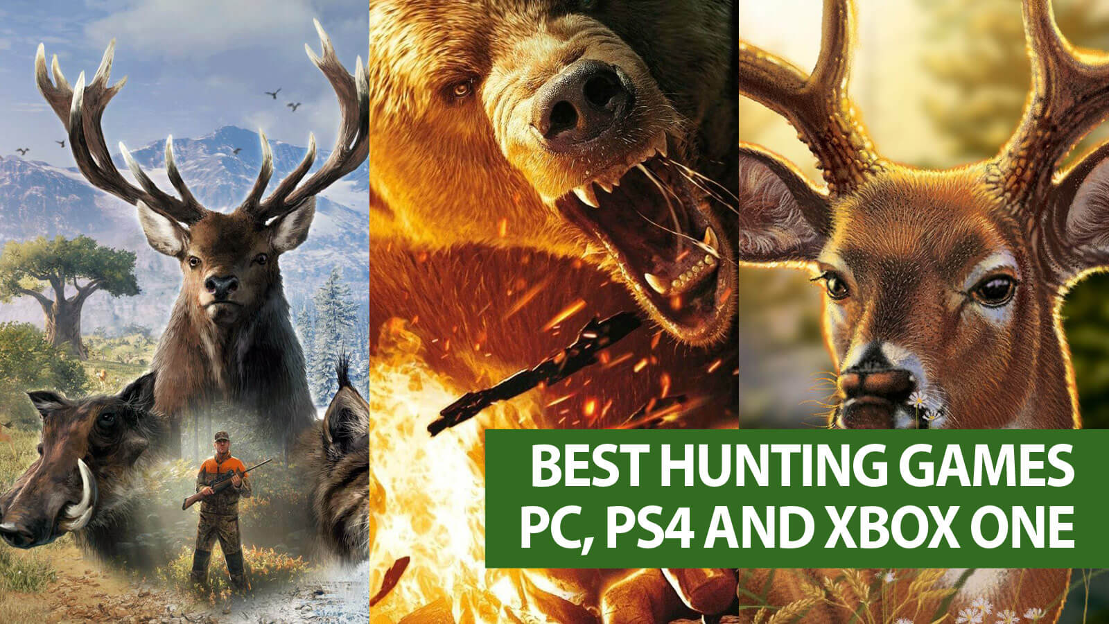 Image of: Cover Best Hunting Games For Pc Playstation And Xbox One Gameslaught Best Hunting Games For Pc Playstation And Xbox One Gameslaught