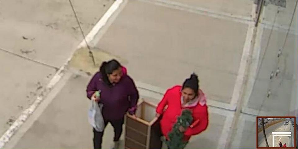 Pasaron caminando y se robaron el cesto