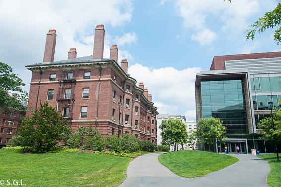 Museos de Harvard. Masssachusetts