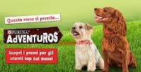 Logo ''Top User Page'' e ogni mese vinci forniture per il tuo cane