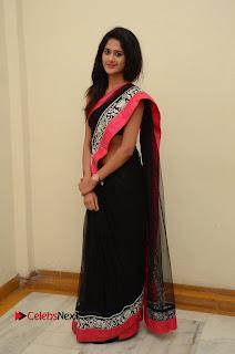 Actress Harani Pictures in Saree at Dada Puttista Audio Launch  0088.jpg