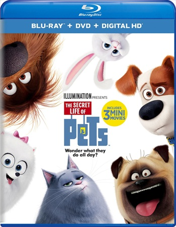 The Secret Life Of Pets 2016 Dual Audio ORG Hindi Bluray Movie Download