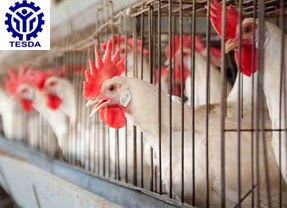 List of TESDA Accredited Assessment Centers for Animal Production NC II