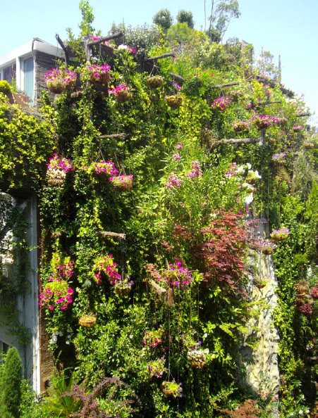 Jardines verticales y cubiertas vegetales for Jardines verticales valencia