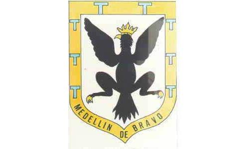 Municipio de Medellín de Bravo
