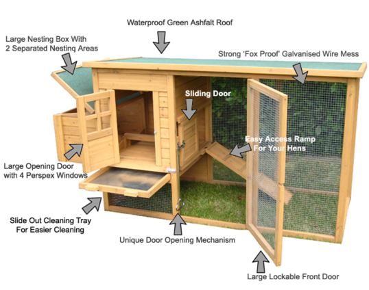 Chicken Coop Blueprints