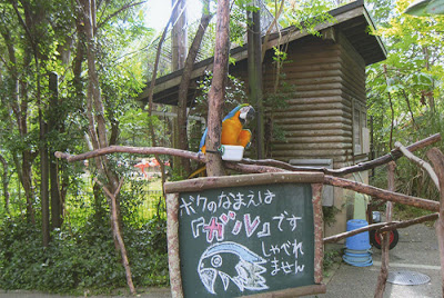 Noichi Zoo Kochi Prefecture