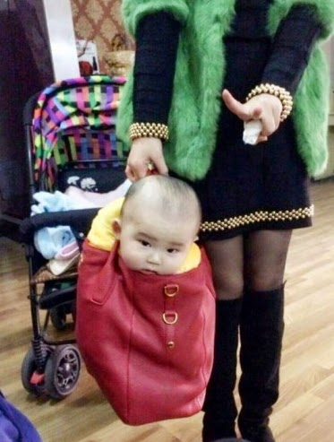 mother put son in handbag