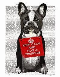 Il blog di Filippo bouledogue francese gennaio 2015