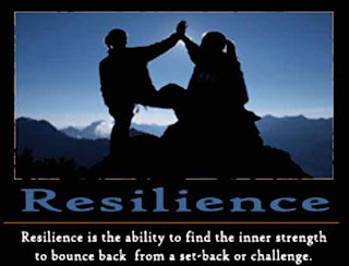 Image result for resilient youth