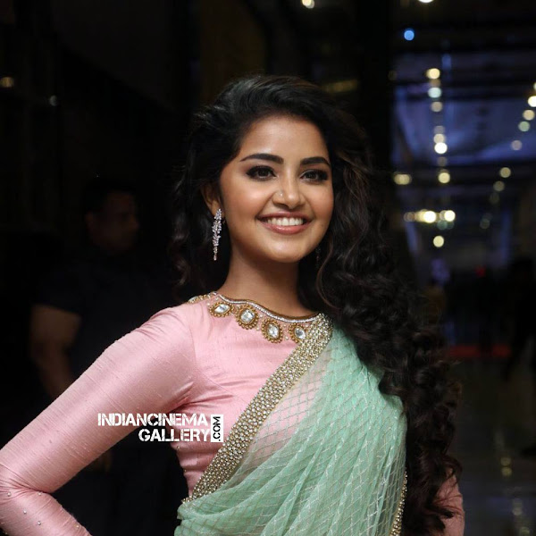 Anupama Parameswaran latest photos from Vunnadi Okate Zindagi audio launch