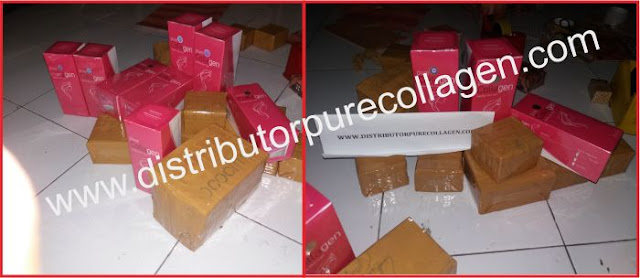 diatributor pure collagen asli