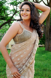Hot saree kannada actress Ragini Dwivedi