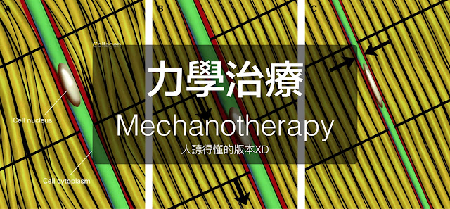 力學治療 Mechanotherapy