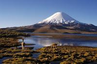 Chile: Lago Chungará