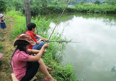 Tản mạn về thú vui câu cá