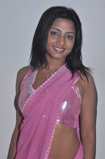 Actress Hot Saree Photos
