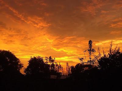 Afrikai nyomozás kenyai naplemente