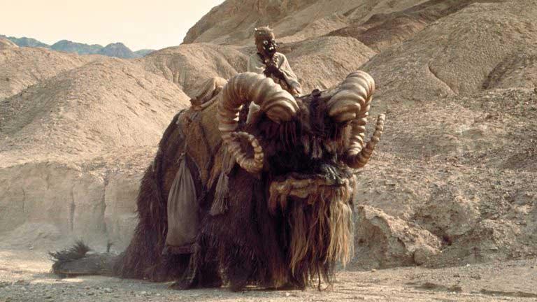 Imagen de elefante disfrazado de bantha en Star Wars 1977