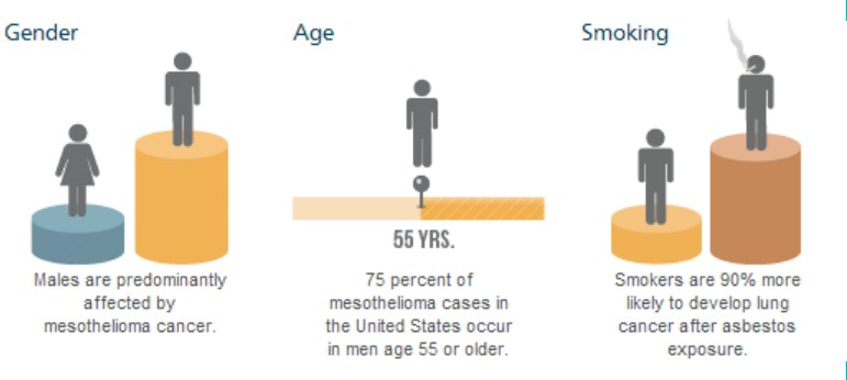 the undeniable truth about mesothelioma life expectancy that no one