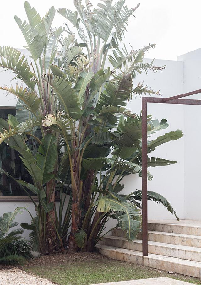 hostal spa empúries / hotel ecológico costa brava