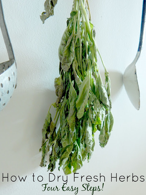 how to dry fresh herbs in 4 easy steps (sweetandsavoryfood.com)