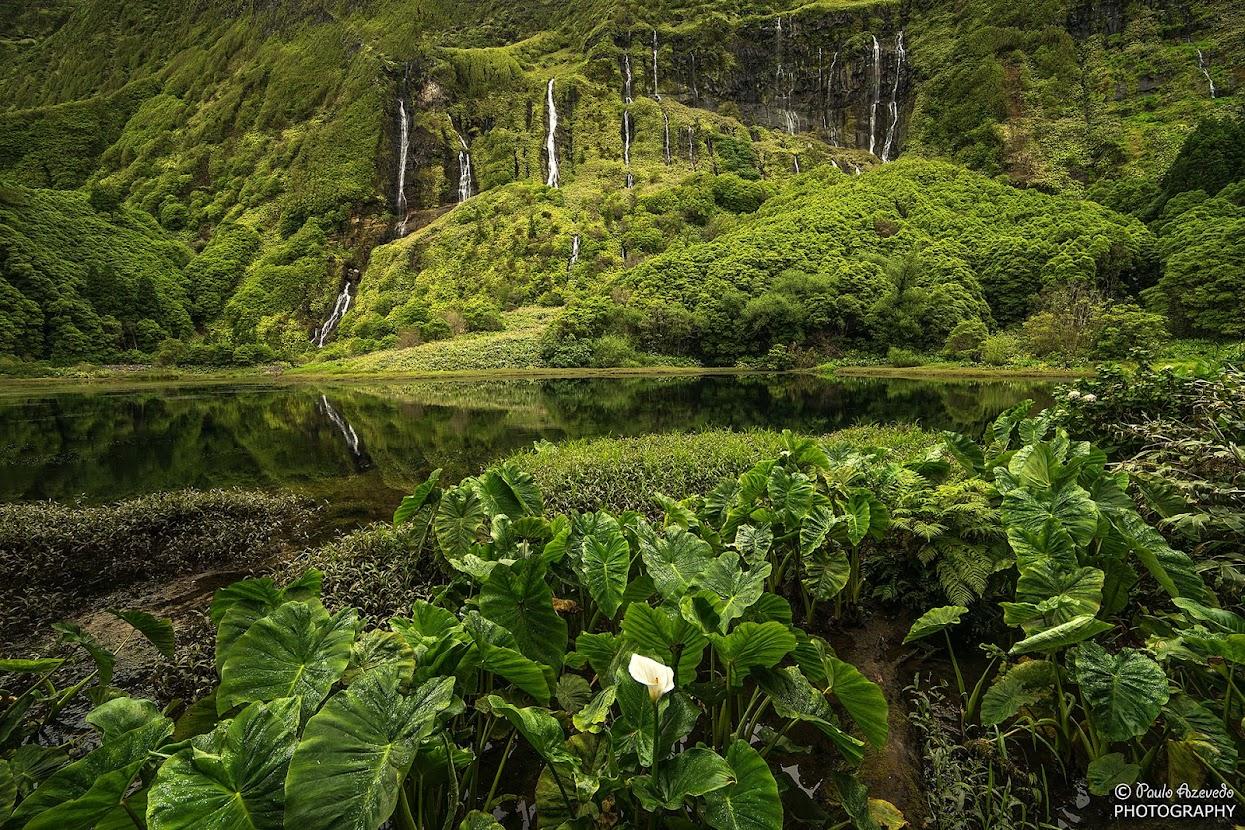 Poço da Alagoínha, Ilha das Flores, Açores
