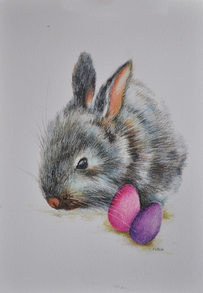 S Peters Art Original Colored Pencil Drawing Easter Bunny