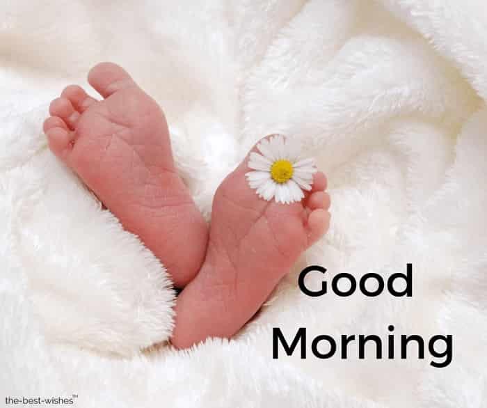 baby birth child soft newborn photo