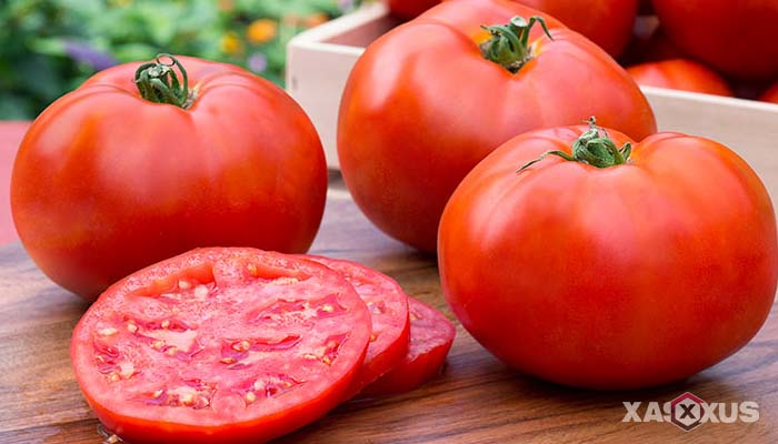 Buah penambah darah untuk penderita darah rendah - Tomat
