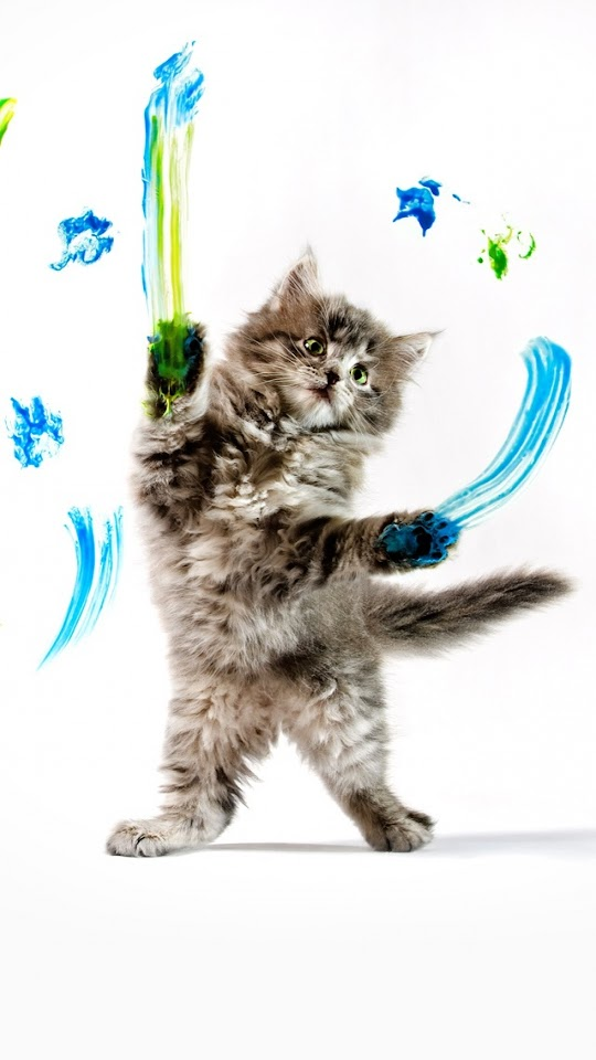 Cat Warrior   Galaxy Note HD Wallpaper
