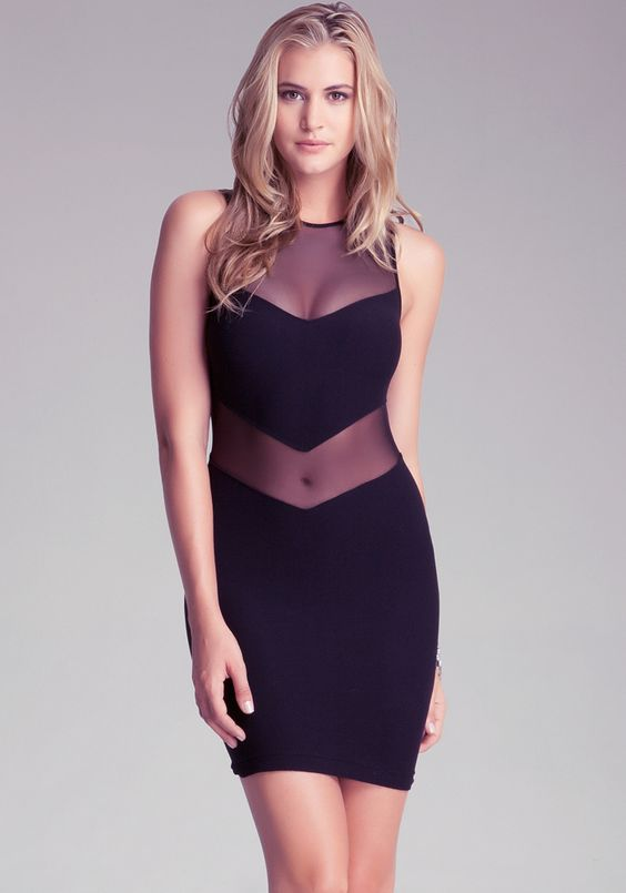 Opportunistic - Maria Mesh Inset Dress