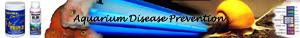 Aquarium Disease Prevention