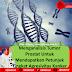 Menganalisis Tumor Prostat Untuk Mendapatkan Petunjuk Tingkat Agresivitas Kanker