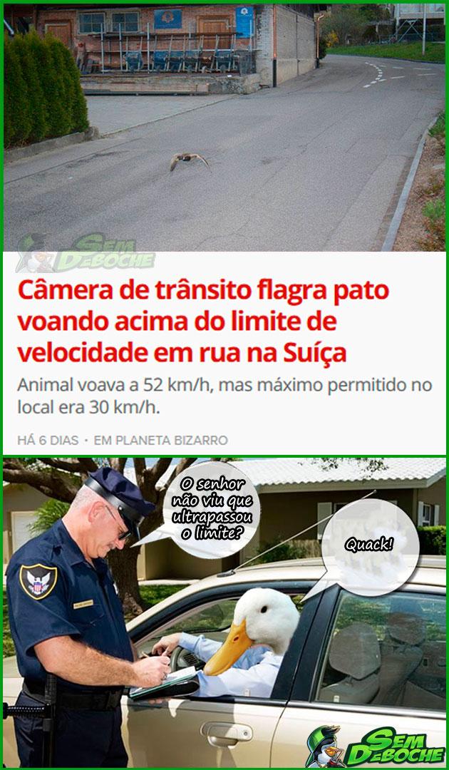 NINGUÉM ESTÁ LIVRE DESSAS CÂMERAS