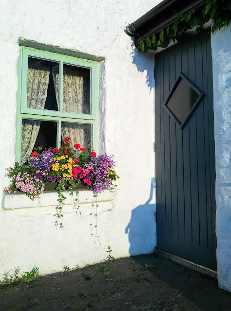 window, flower pot, door
