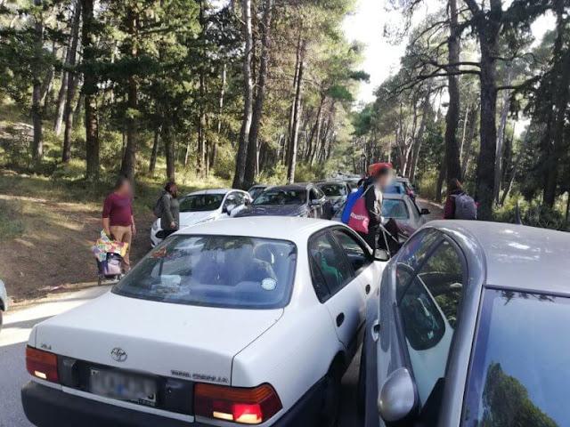 Πήγαν για Κούλουμα στο Τατόι και τους βγήκε ξινό! (photos)