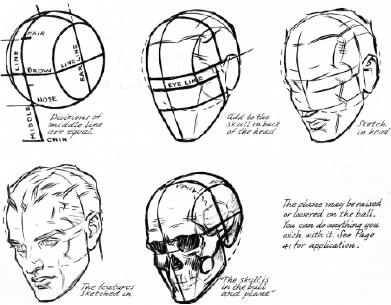 Dibujar Las Proporciones Del Rostro De Una Mujer Anatomia Pinterest ...