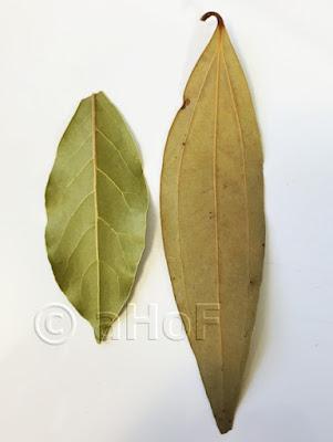 Bay Laurel and Tej Patta Leaves - comparison