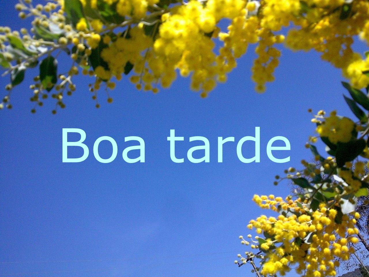 Boa Tarde: Boa Tarde RS #mensagens#alegria #álbum
