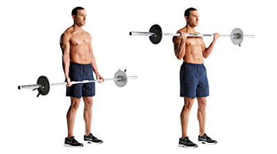 Best 4 Bicep Exercises with Dumbbells