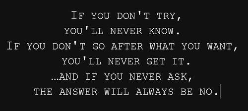 If You Don't Try You'll Never Know If You Don't Go After