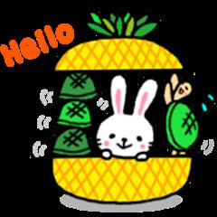 rabbit&turtle summerversion