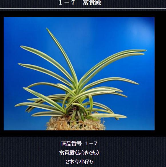 http://www.fuuran.jp/1-7html