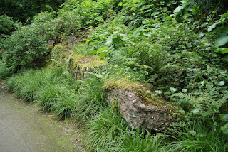 Betonreste des Forts im nahegelegenen Felsengarten, die von Moos überzogen sind
